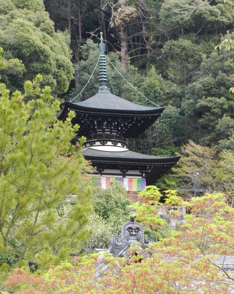 Kyoto, Japanese cherry blossoms, Ekikando Zenrin-ji, Eikando in Maple Leaves, Jōdo Shū, Hōnen, Japenese zen temples, zen Buddhism, Japan Buddhist temples, Jim Caldwell Redondo Beach